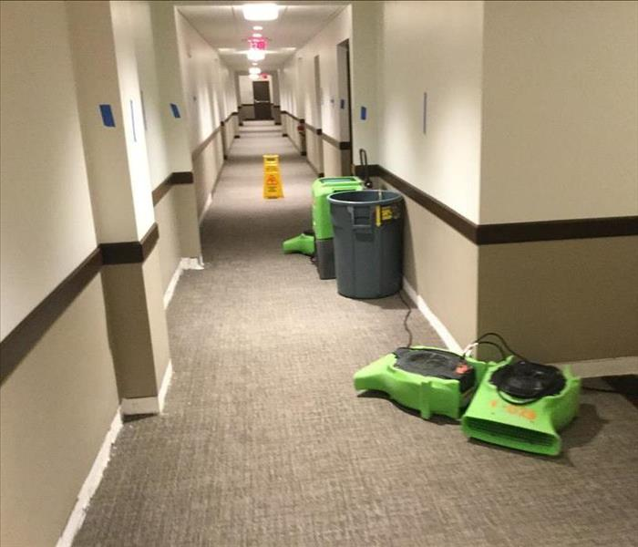 Exeter Water Damage in a Hotel