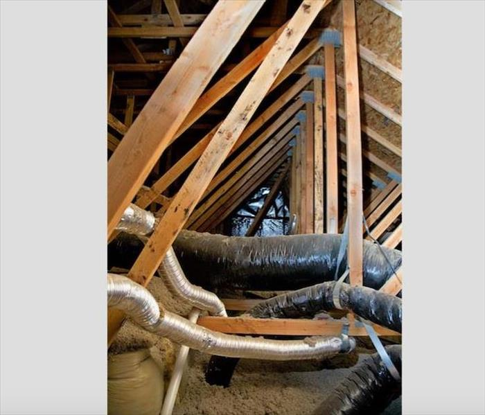 Mold Remediation Cold, Wet Weather Increases Chances of Mold Damage to Historic Houses in Hampton