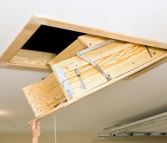 Mold Remediation Mold Damage Can Rapidly Grow in Your Exeter Home's Attic