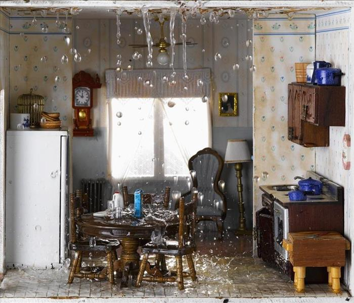 Water Damage Water Removal and Cleanup From a Leaking Refrigerator/Freezer in Your Exeter Home