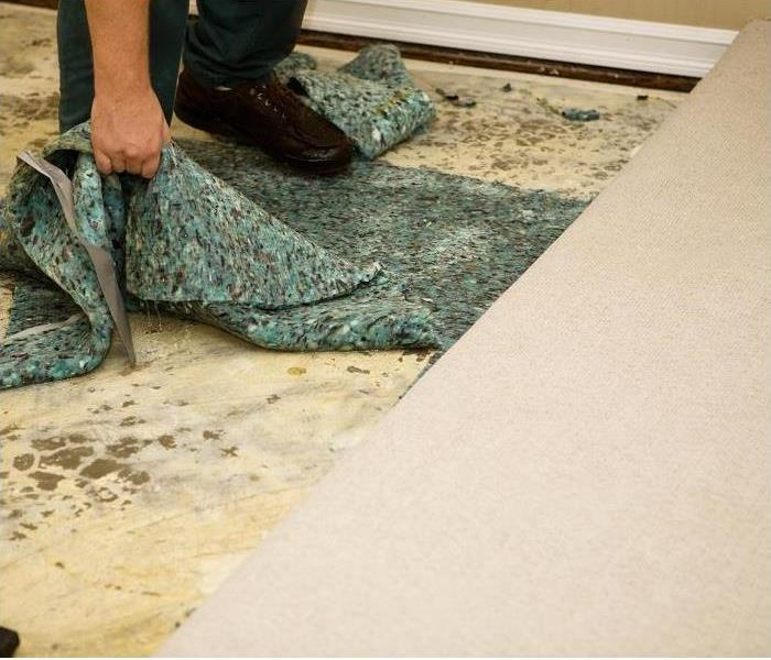 person removing carpet padding and carpeting