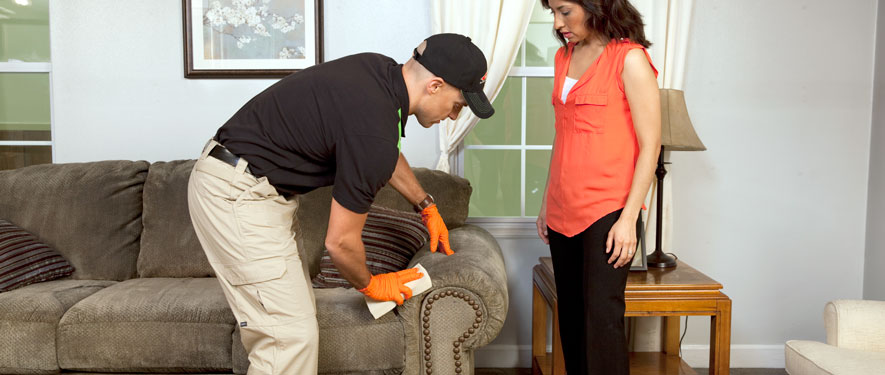 Portsmouth, NH carpet upholstery cleaning