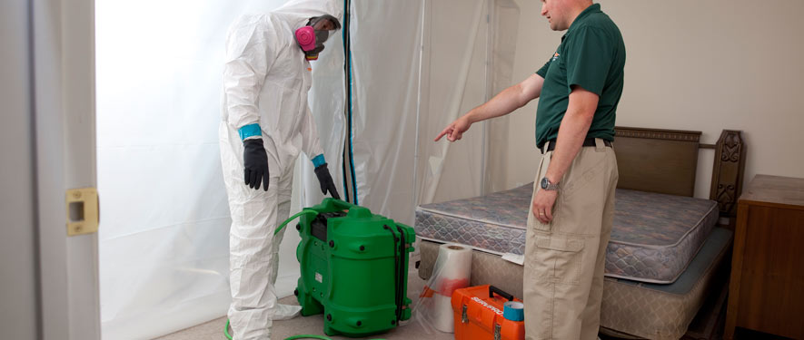 Portsmouth, NH mold removal process